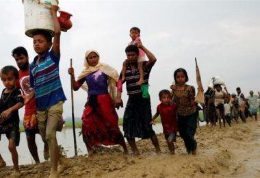 Exodus of the Rohingya