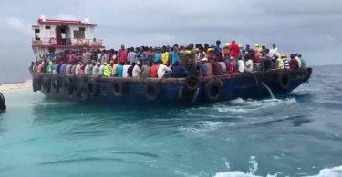 labour transport